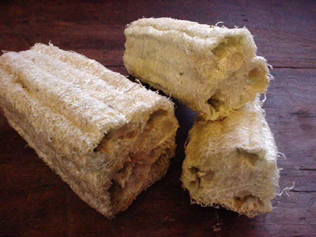 Loofah Sponges -Dried