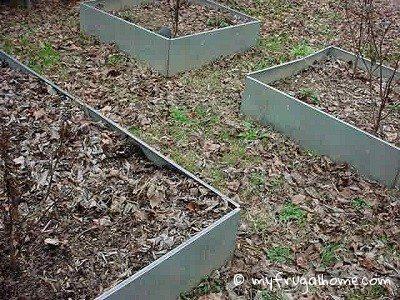 My 2013 Garden Plans
