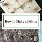 Dibble