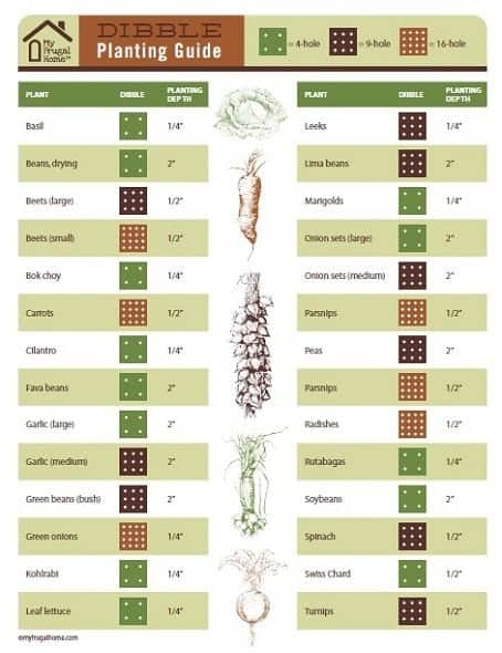 Printable Dibble Planting Guide