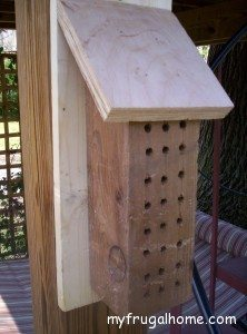 Hang Your Mason Bee House