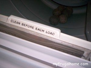 Dryer Lint Trap