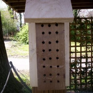 How to Build a Mason Bee House