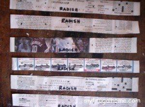 Radish Seed Tapes
