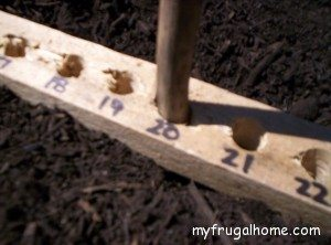 How to Make a Seed Planting Ruler