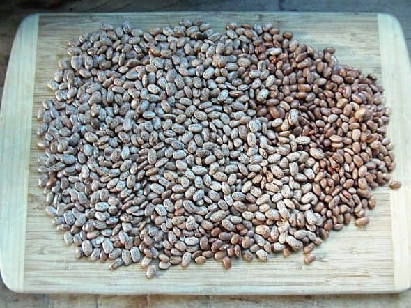 Sort Dried Pinto Beans