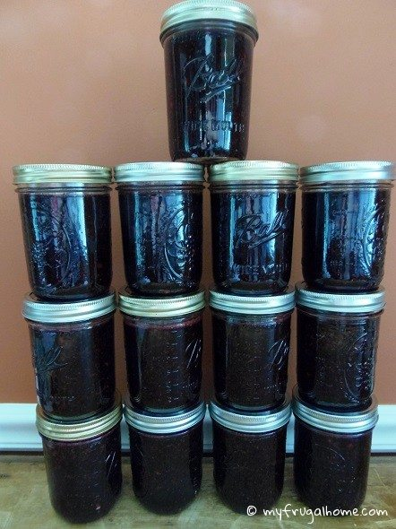 Blackberry Freezer Jam