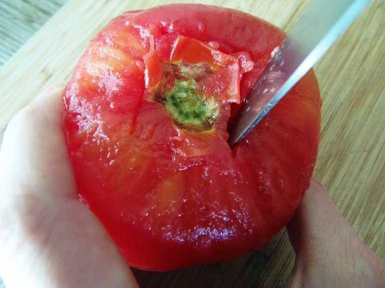 Cut Around the Tomato Stem at a 45 Degree Angle