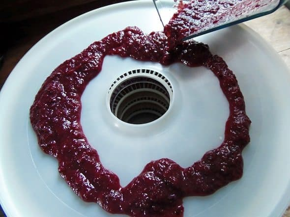 Pour the Pureed Fruit onto the Fruit Leather Screen