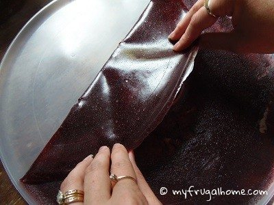 Peel the Fruit Leather Off the Screen