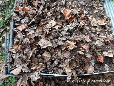 Cover the Garlic with Mulch