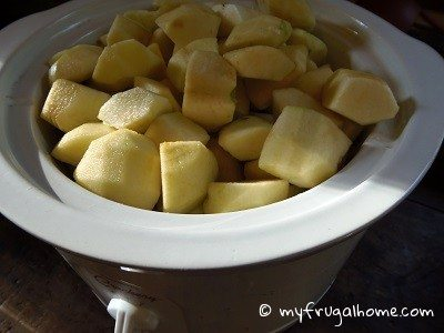 Fill Your Crockpot with Apples