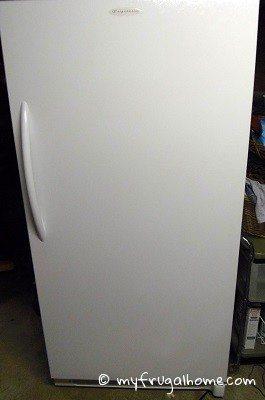 Estate Sale Find: Freezer