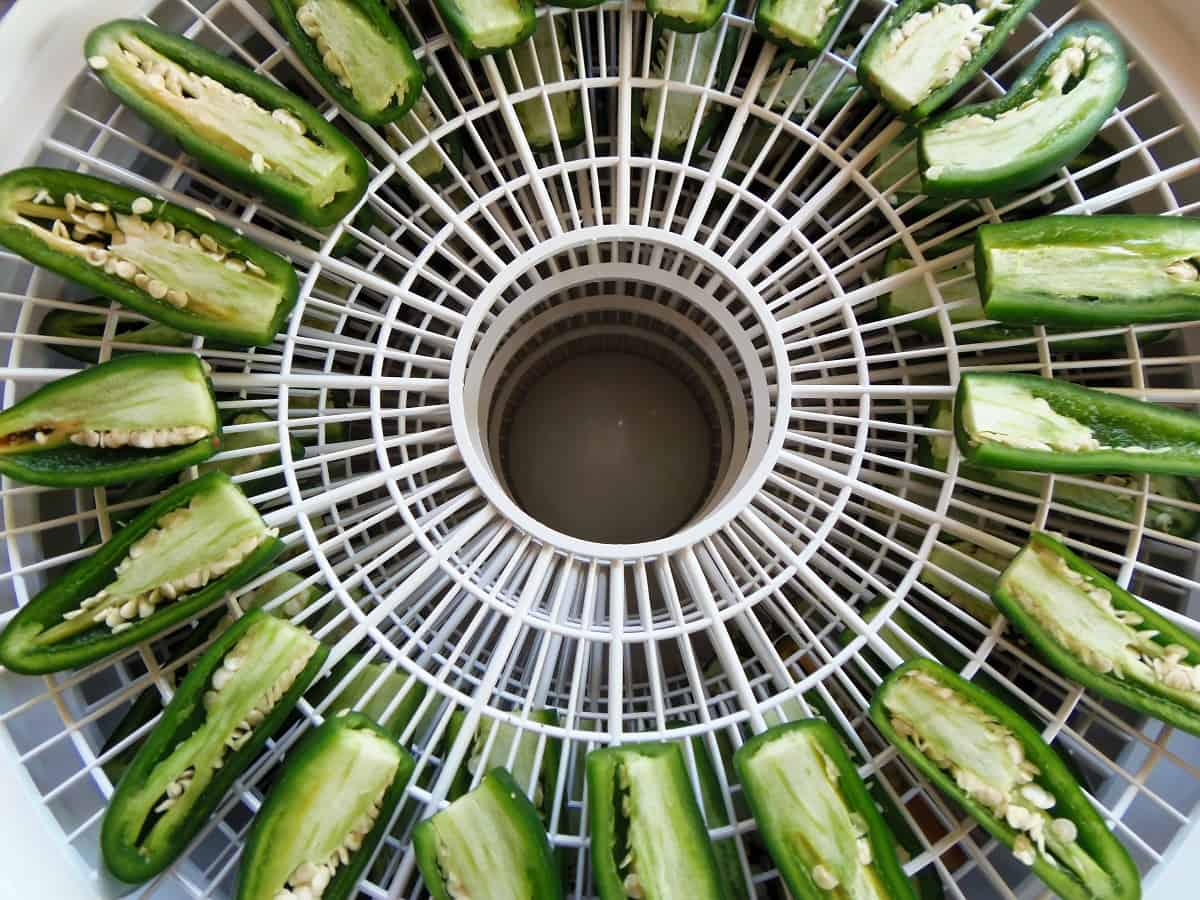 Dehydrator Loaded With Peppers