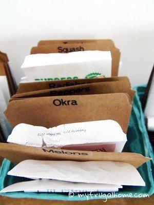 Seed Organizer - Closeup