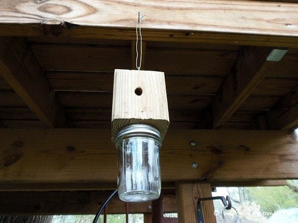 Build a Carpenter Bee Trap