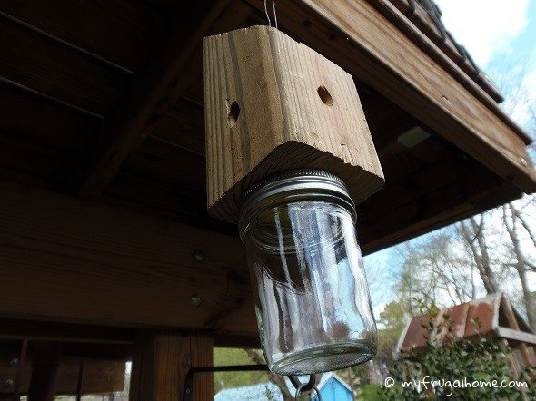 How to build a carpenter bee trap Trap house plans