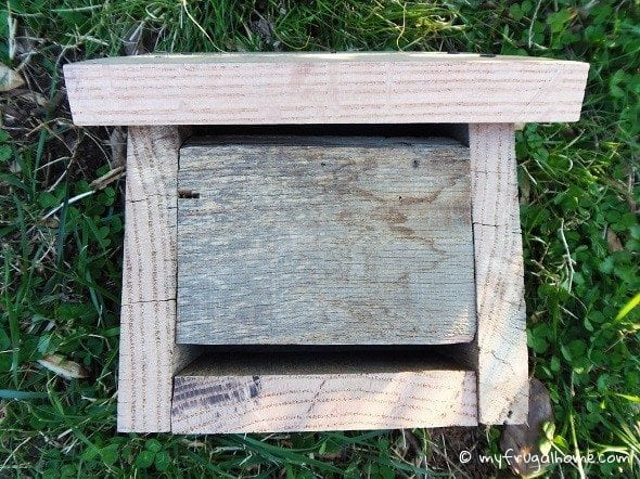 How to Build a Ladybug House