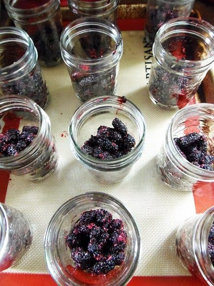 Divide the Berries Between the Jars