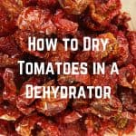 How to Dry Tomatoes in a Dehydrator