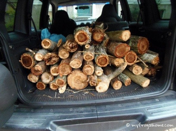 How to Get Free Firewood