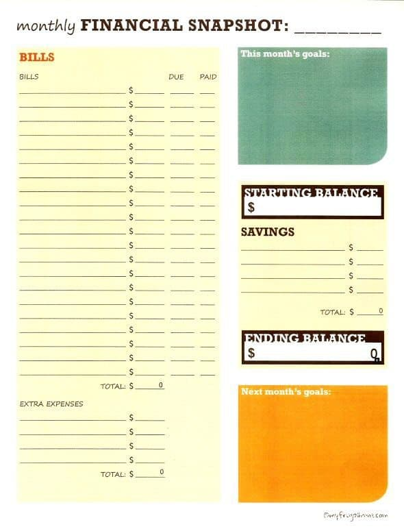 Monthly Financial Snapshot Worksheet