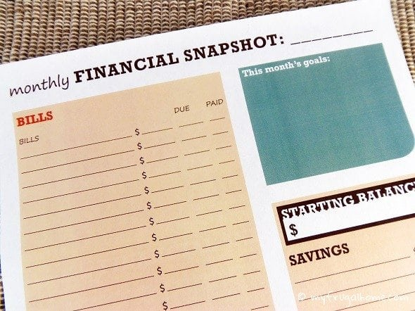 Printable Monthly Financial Snapshot