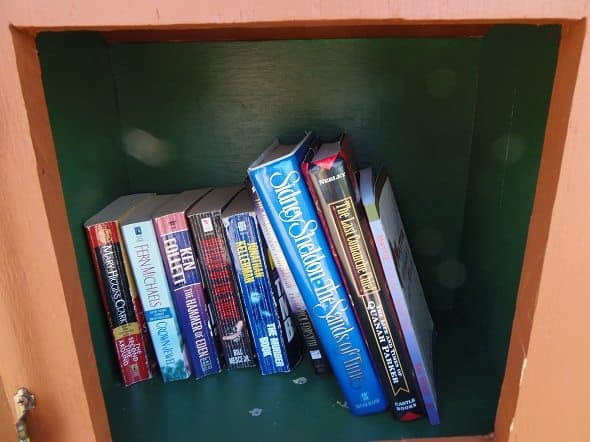 Inside of Little Free Library Box