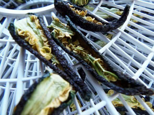 Dried Pepper Closeup