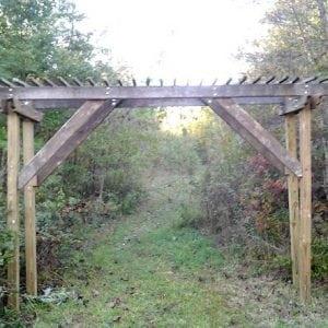 Curb Find: Arbor