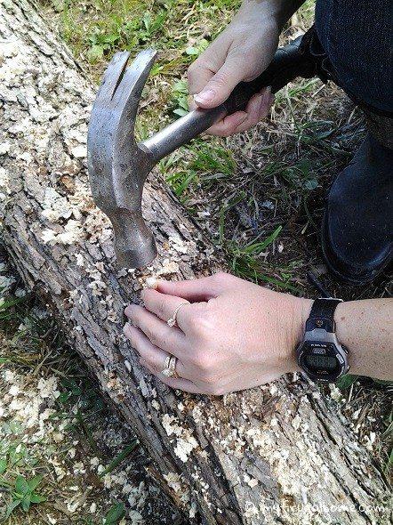 Hammer in Mushroom Plugs