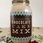 Homemade Chocolate Cake Mix