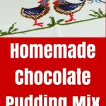Homemade Chocolate Pudding Mix