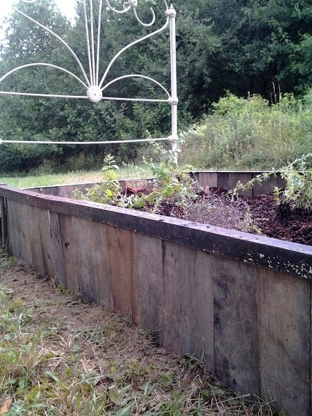 Side of Raised Bed