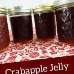Crabapple Jelly