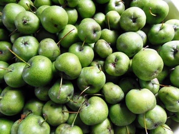 Green Crabapples
