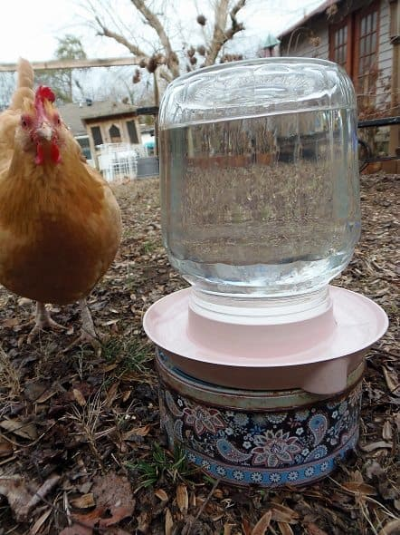 How To Make A Water Heater For Chickens And Other Outdoor Pets