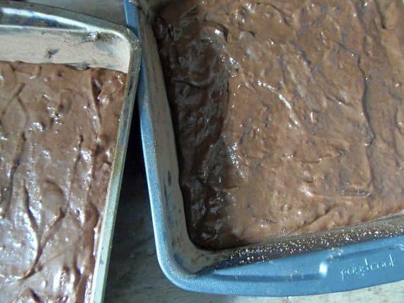 Pour Cake Batter into Pans