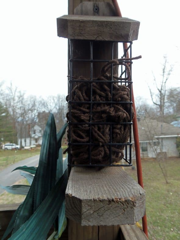 Suet Cage with Nesting Materials