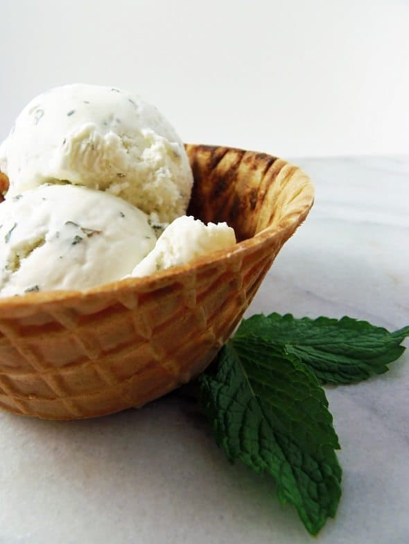 Bowl of Fresh Mint Peppermint Ice Cream