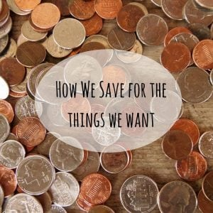 How We Save for the Things We Want