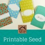 Printable Seed Packets Pin Graphic