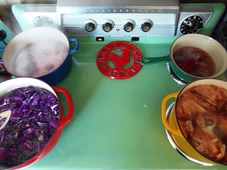 Making Egg Dyes on the Stove
