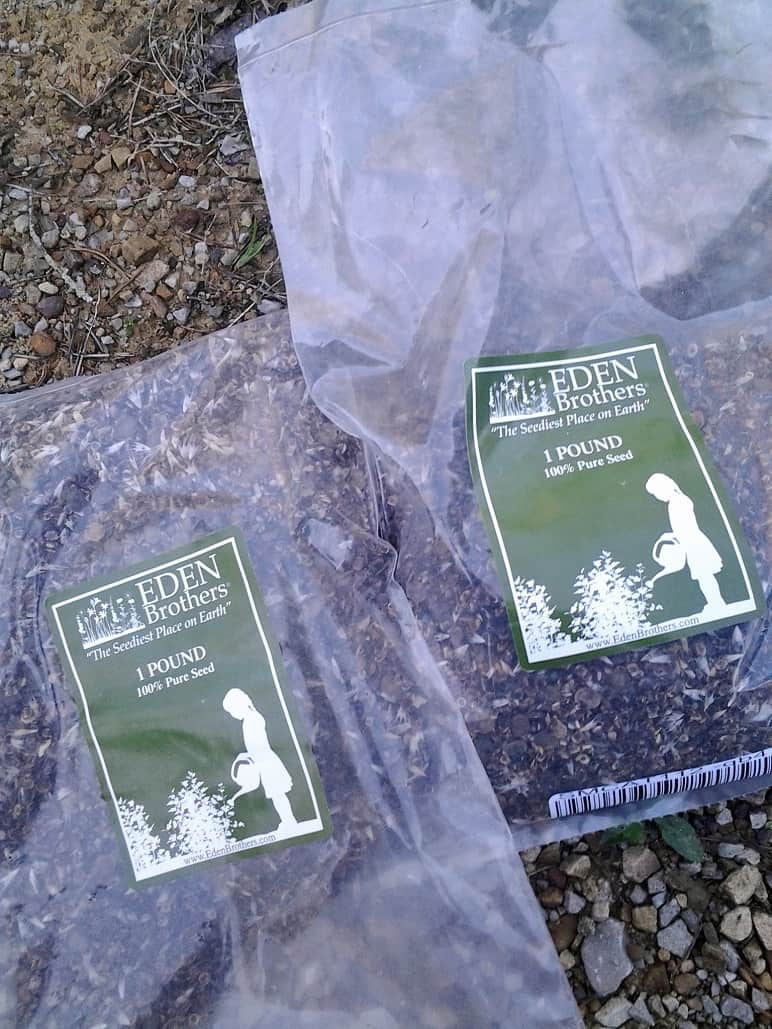 Bulk Wildflower Seeds