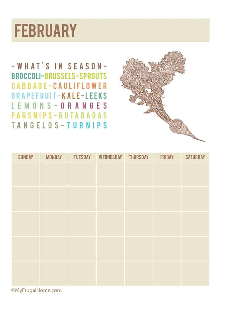 Calendar Showing What's in Season in February
