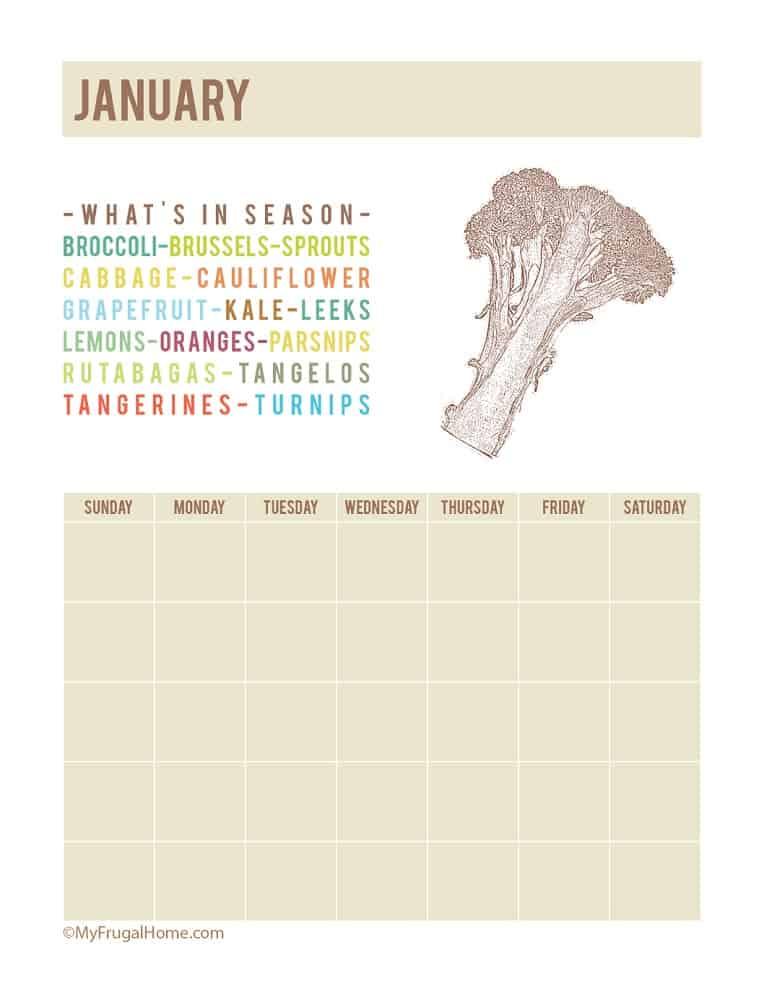 Printable Calendar Showing What's In Season Calendar in January