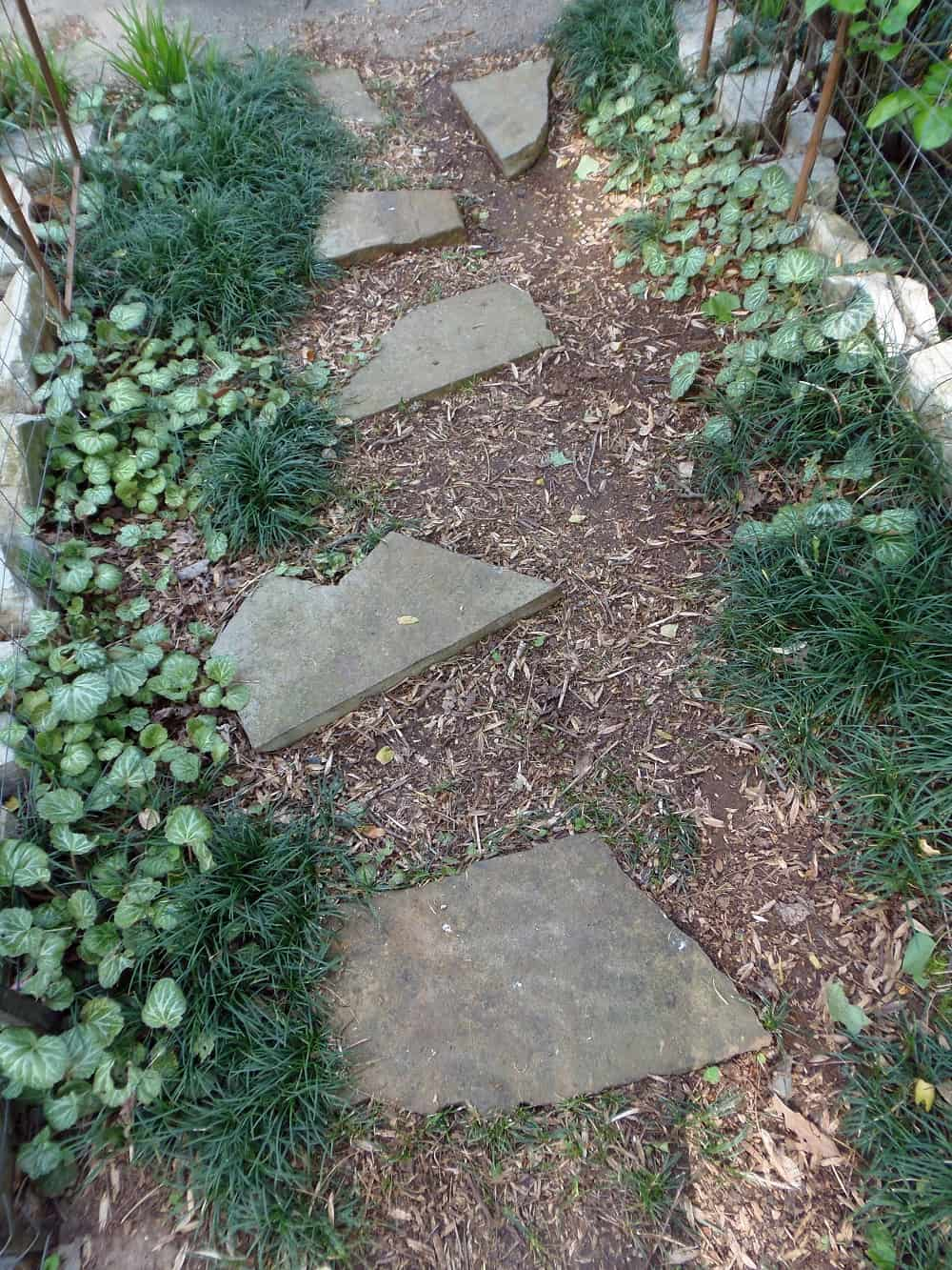 Garden Path Under Grape Arbor