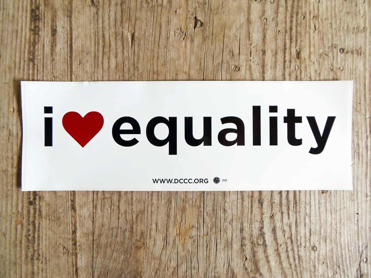 Free I Heart Equality Sticker from dccc.org