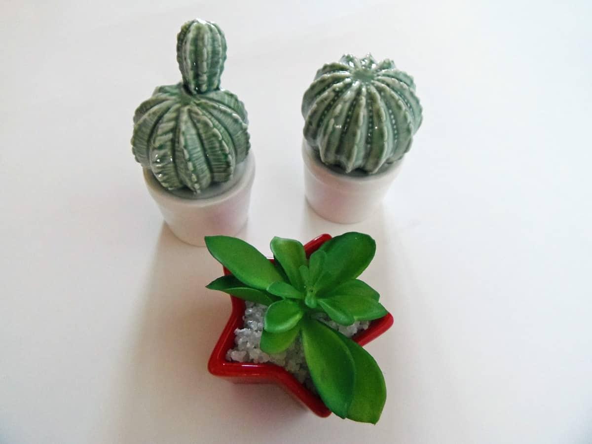 Fake Cacti