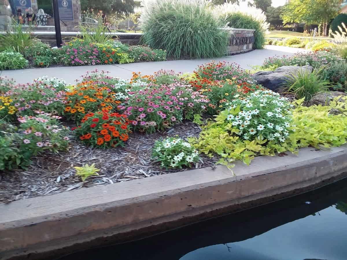 Landscaping Along Bricktown Canal